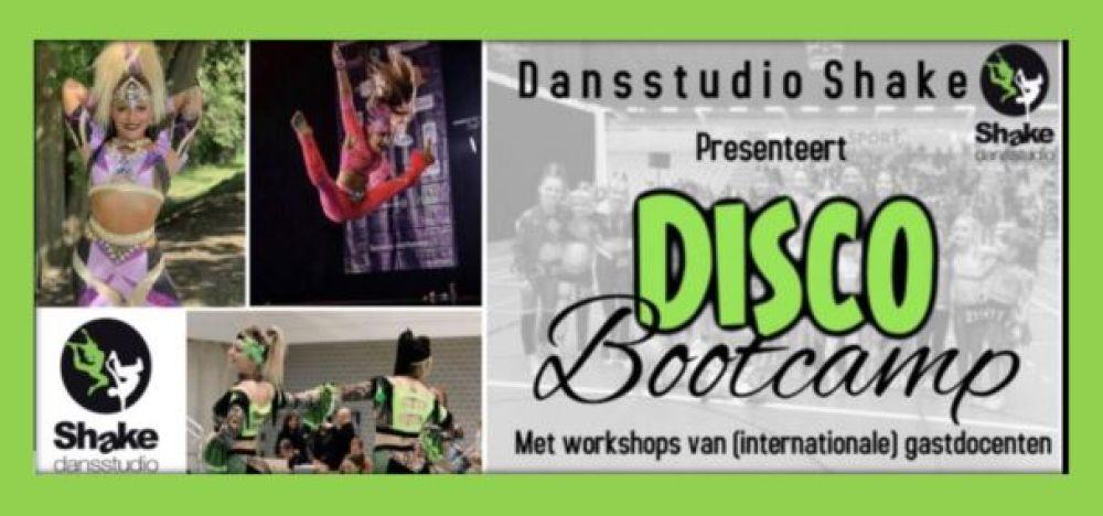 Disco Bootcamp (°2007 - ° 2013)